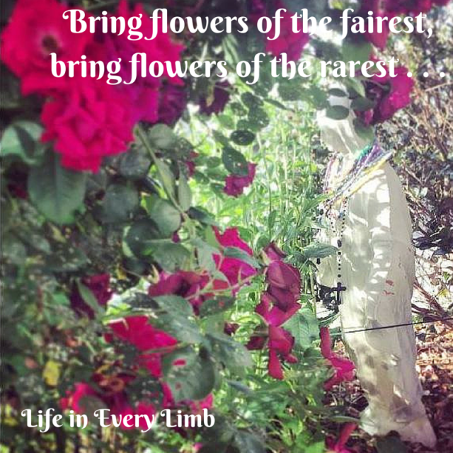 Bring flowers of the fairest, bring flowers of the rarest . . .