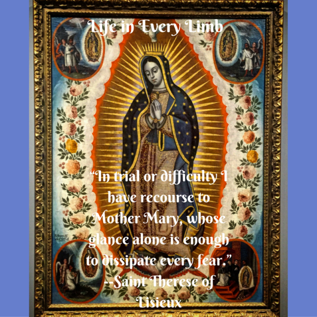 """""""In trial or difficulty I have recourse to Mother Mary, whose glance alone is enough to dissipate every fear.""""--Saint Therese of Lisieux"""