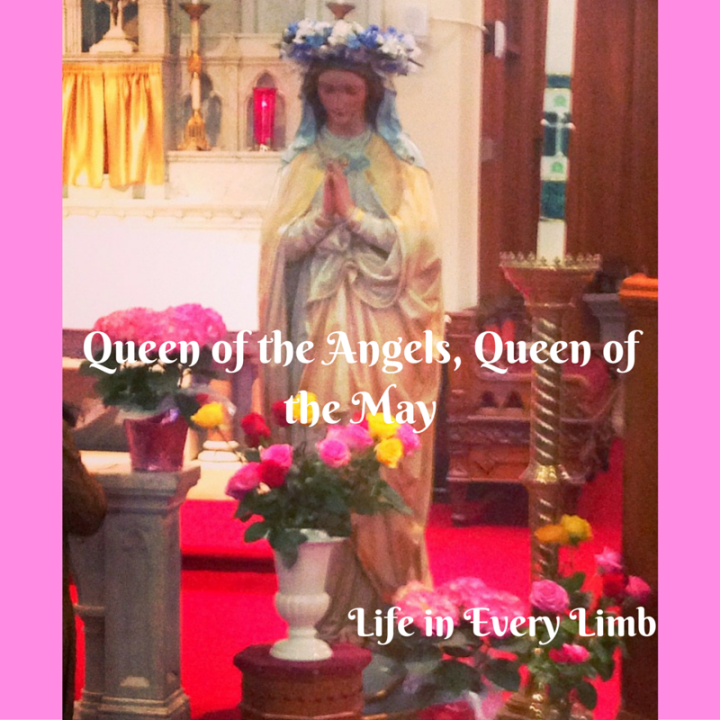 Queen of the Angels, Queen of the May