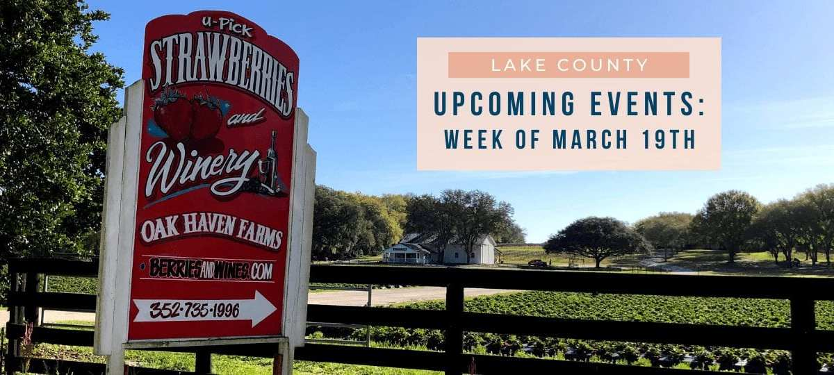 Things to do in Mount Dora