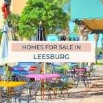 Leesburg Homes for Sale