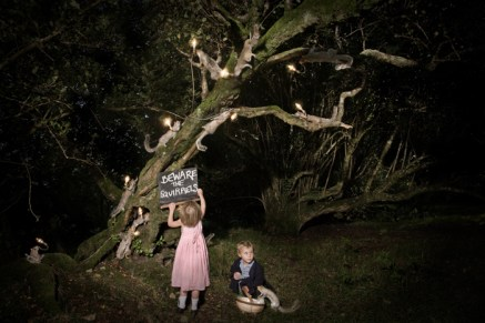 Beware of squirrels, Alex Randall lights, photographs Claire Rosen