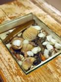 Sea shells, The Gallivant, Rye