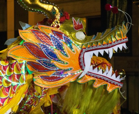 Dragon closeup2
