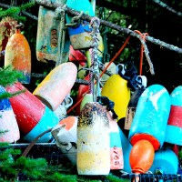 Friday Fotos: Buoys Will Be Buoys