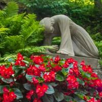 Friday Fotos - Passion Garden, Oratoire - St. Joseph, Montreal