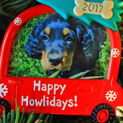 Lexi ornament