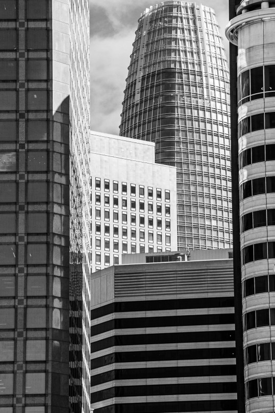 Salesforce B&W