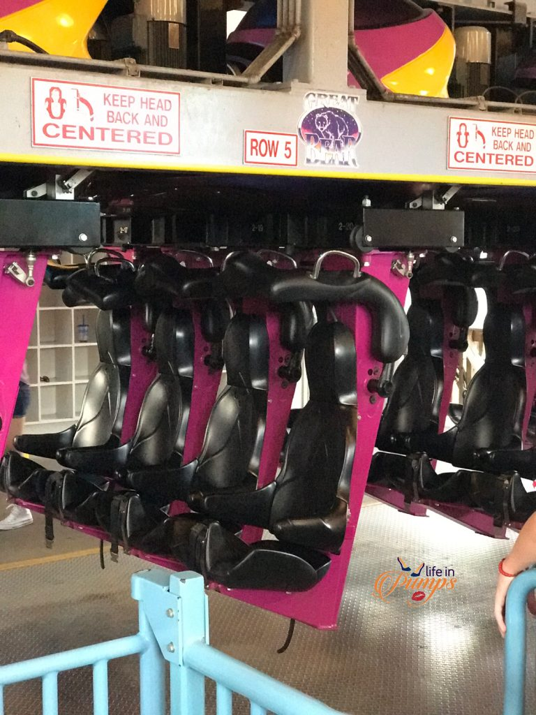 Roller Coaster fun on Great Bear - Life in Pumps