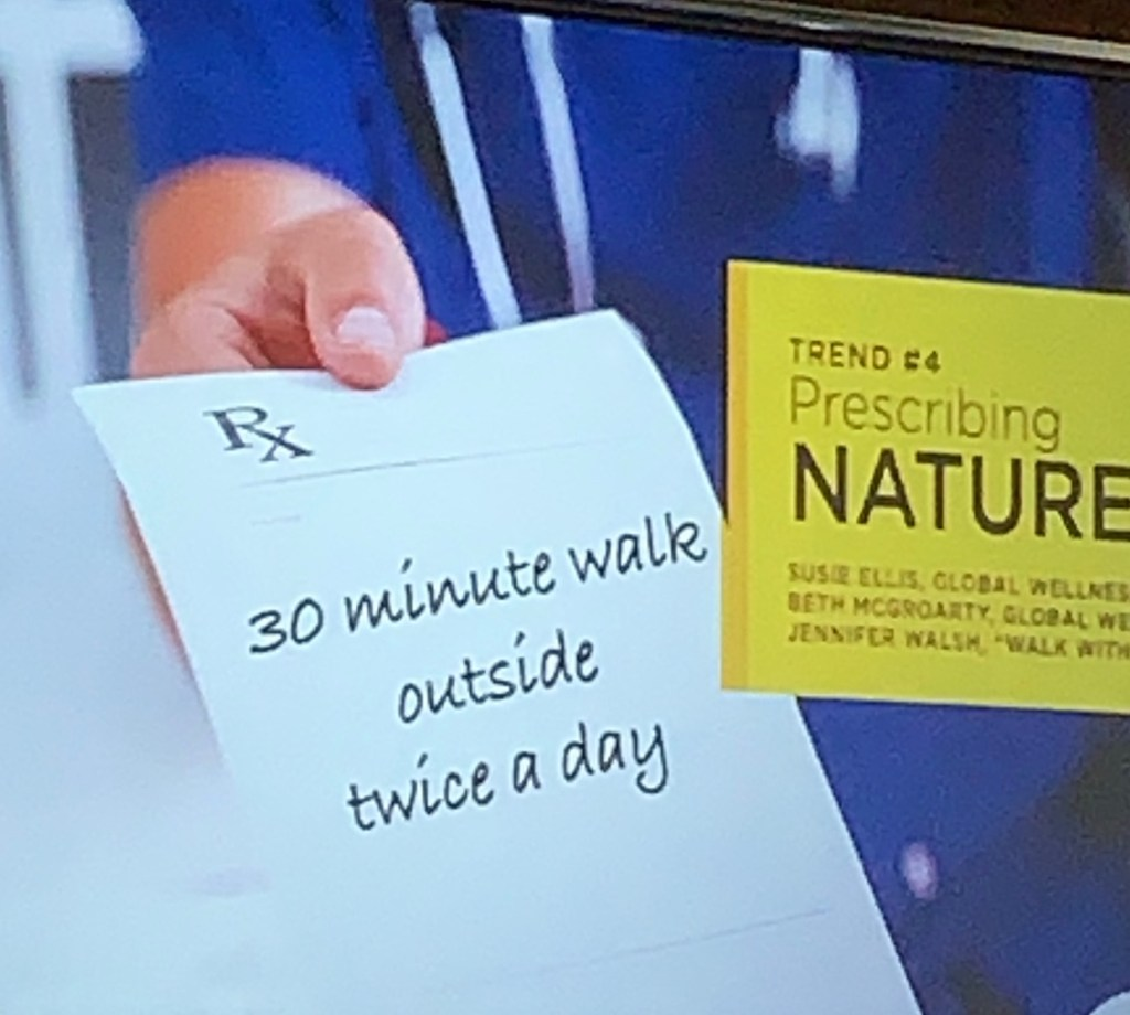 Prescription for nature for Health and Wellness Trends 2019