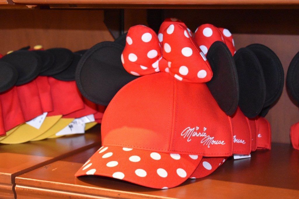 Ten Tips for Disney World on a Budget 3