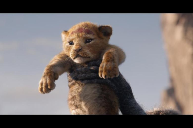 Baby Lion Cub Simba in the Lion King