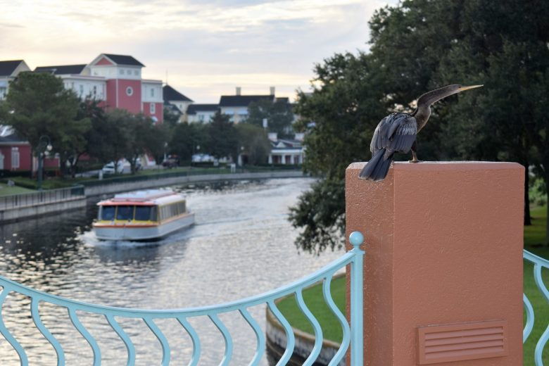Walt Disney Ferry Sustainable Travel