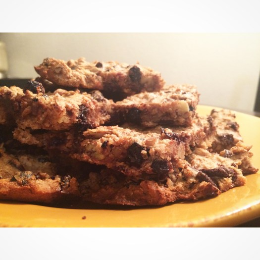 Life in Spandex's Grab n' Go Homemade Everything Energy Bars