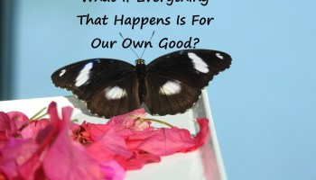 What If Everything That Happens Is For Our Own Good?