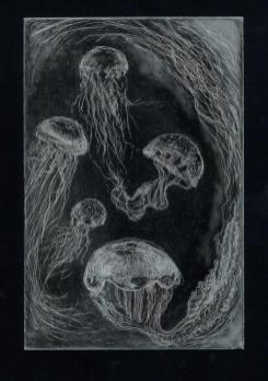 Intagliojellyfish2silveronblack-ilovepdf-compressed-page-001