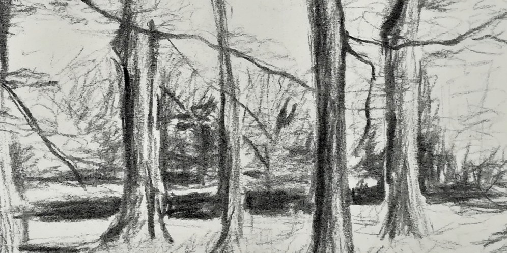 Eventbrite header image - charcoal trees