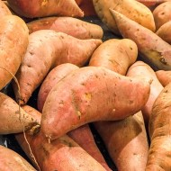 Sweet Potatoes for Thanksgiving – Too Many Choices