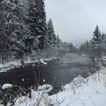 Winter Cross-Country Skiing on Sarvis Creek