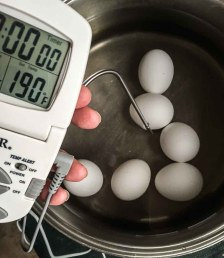 cooking eggs by temp