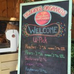 Delicious Orchards sign