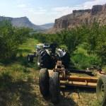 Kokopelli orchard tractor