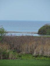 marsh and Lake Ontario Oswego
