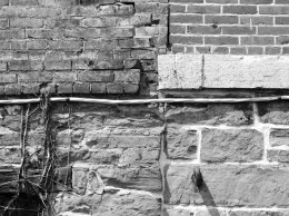 bricks old city hall BW