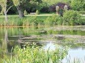 Glimmerglass Lagoon Oswego State