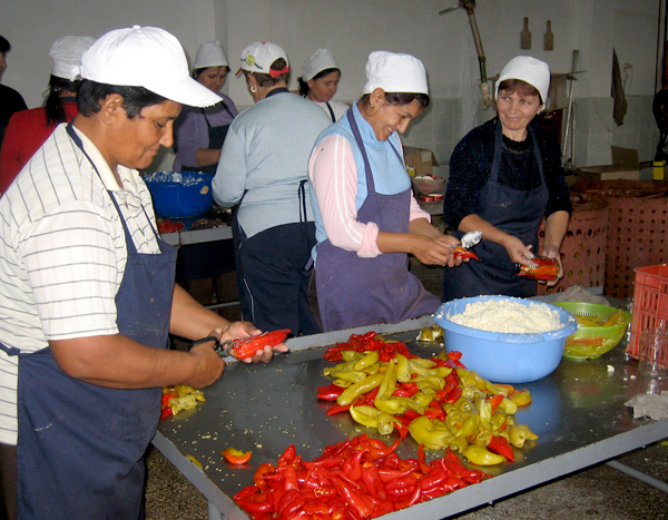 Stuffing Peppers in Albania