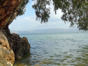 On the shore of the Sea of Galilee at Peter's Primacy, Israel
