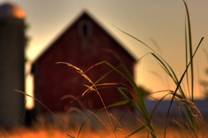 farm-prairie-grass-1161143