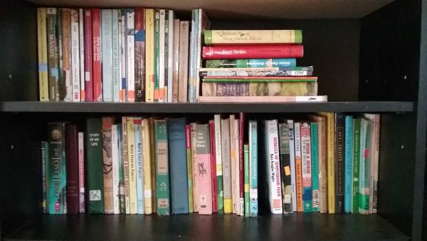 10 Days to a Flexible Homeschool Plan - Organizing the Stuff