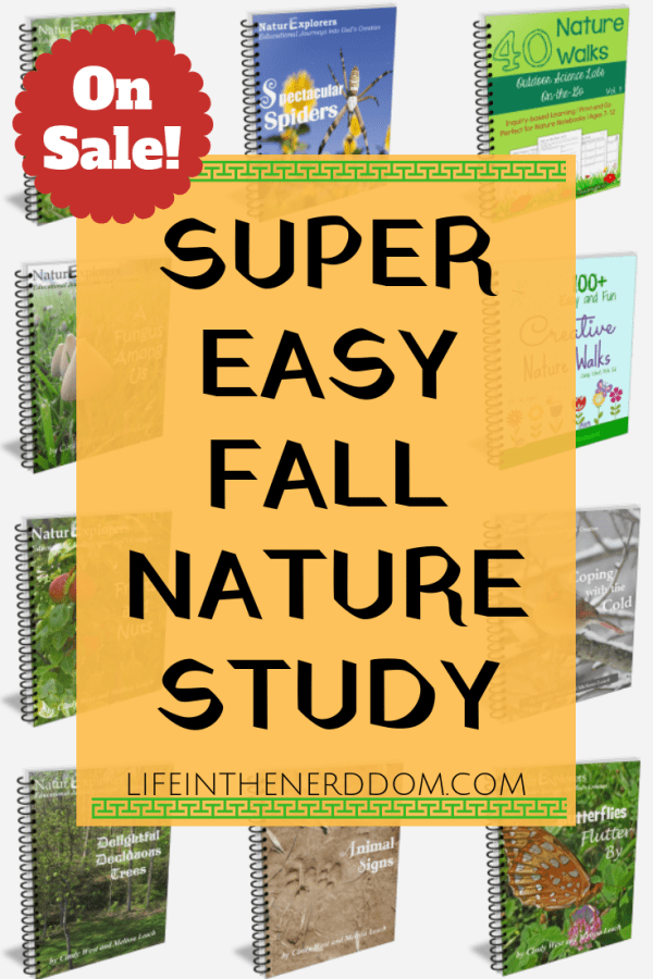 Super Easy Fall Nature Study @ LifeInTheNerddom.com