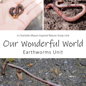 Our Wonderful World: Earthworms Unit Nature Study at LifeInTheNerddom.com