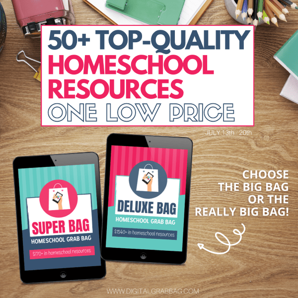 How to Use the Homeschool Grab Bag in YOUR Homeschool at LifeInTheNerddom.com