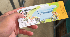 30 RMB ticket (worth it)