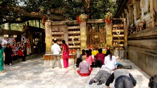 Under the Bodhi Tree in Bodhgaya