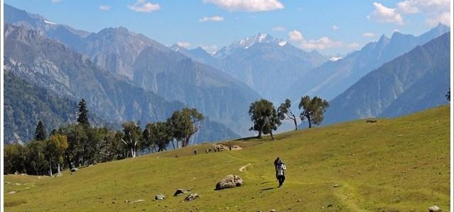 Walking in Green Meadows, Kashmir, India