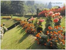 Mughal Gardens- Chashme Shahi