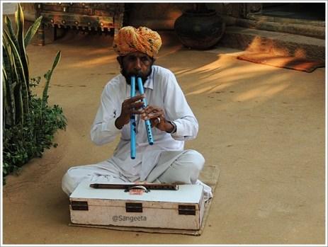 Folk Instrument Algoja