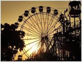 Pushkar Fair Rajasthan Sunset