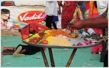 Pushkar Mela Fair 2014 Rajasthan