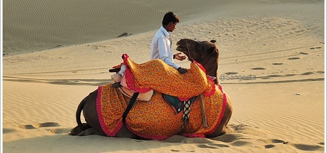 Glimpses from the SAM Sand Dunes, Jaisalmer