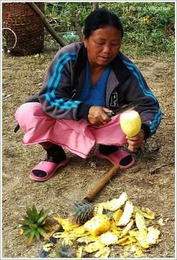 Manipur Hill Pineapple