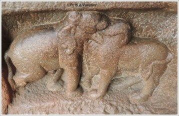 Badami Caves Cave 1 Gaja Vrushabha Elephant and Boar