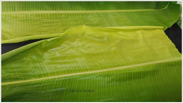 UBM Banana Leaf -Empty