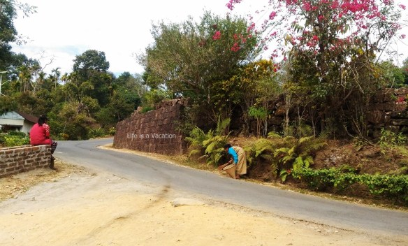 Mawlynnong Cleanest Village In India