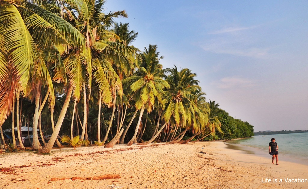 4 Must Visit Beaches in Havelock Island of Andamans