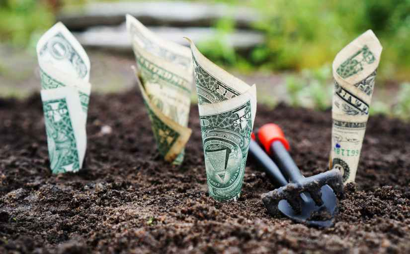 You Can Use Your Drill Check to Grow a Money Garden